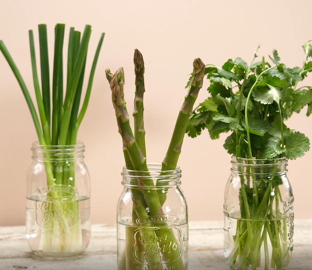 シャキッと新鮮に!野菜の鮮度を保つ「保存テク」とは?