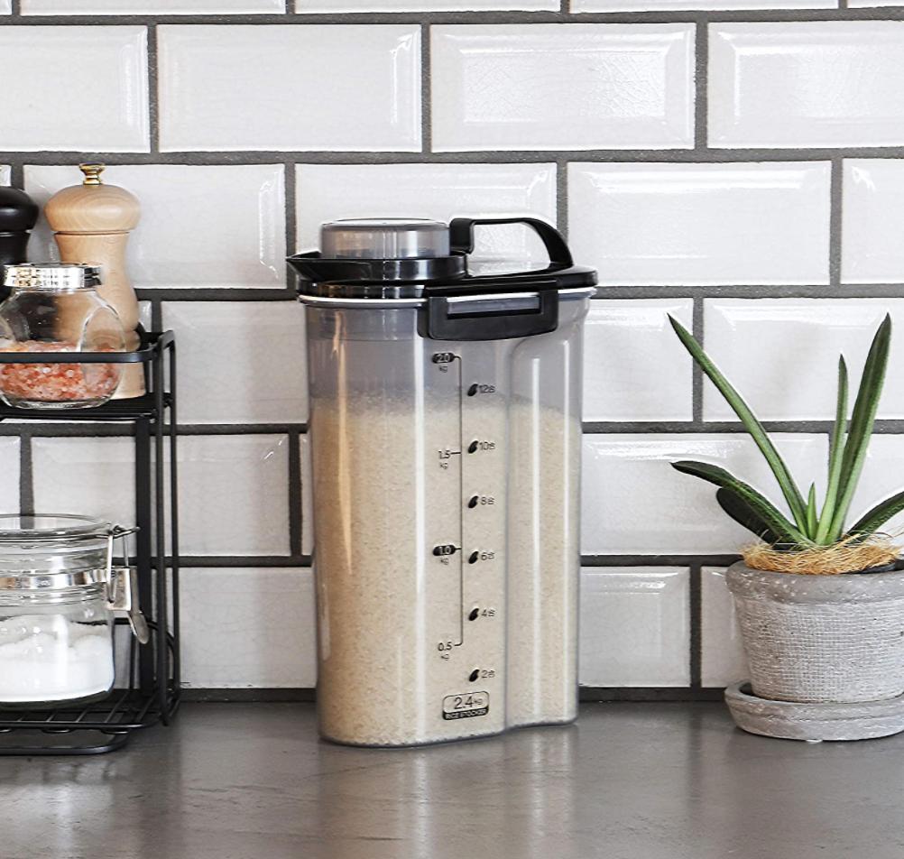 用途に合わせて選べる。冷蔵庫で使う「米びつ」のおすすめ5選
