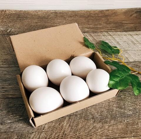ゆで卵の日持ちはどれくらい?正しい保存方法をご紹介
