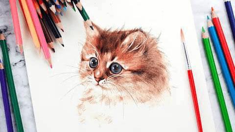 鉛筆なのに水彩画が描ける「水彩色鉛筆」とは?おすすめ商品と選び方をご紹介