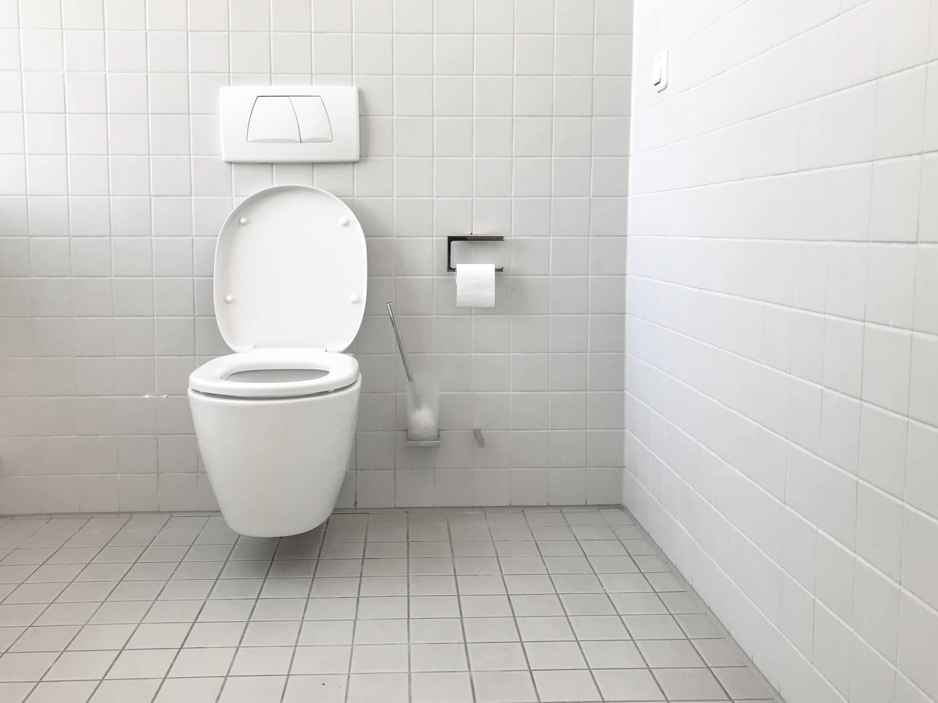 トイレブラシの扱い方とは?収納方法やタイプ別のおすすめ商品を紹介