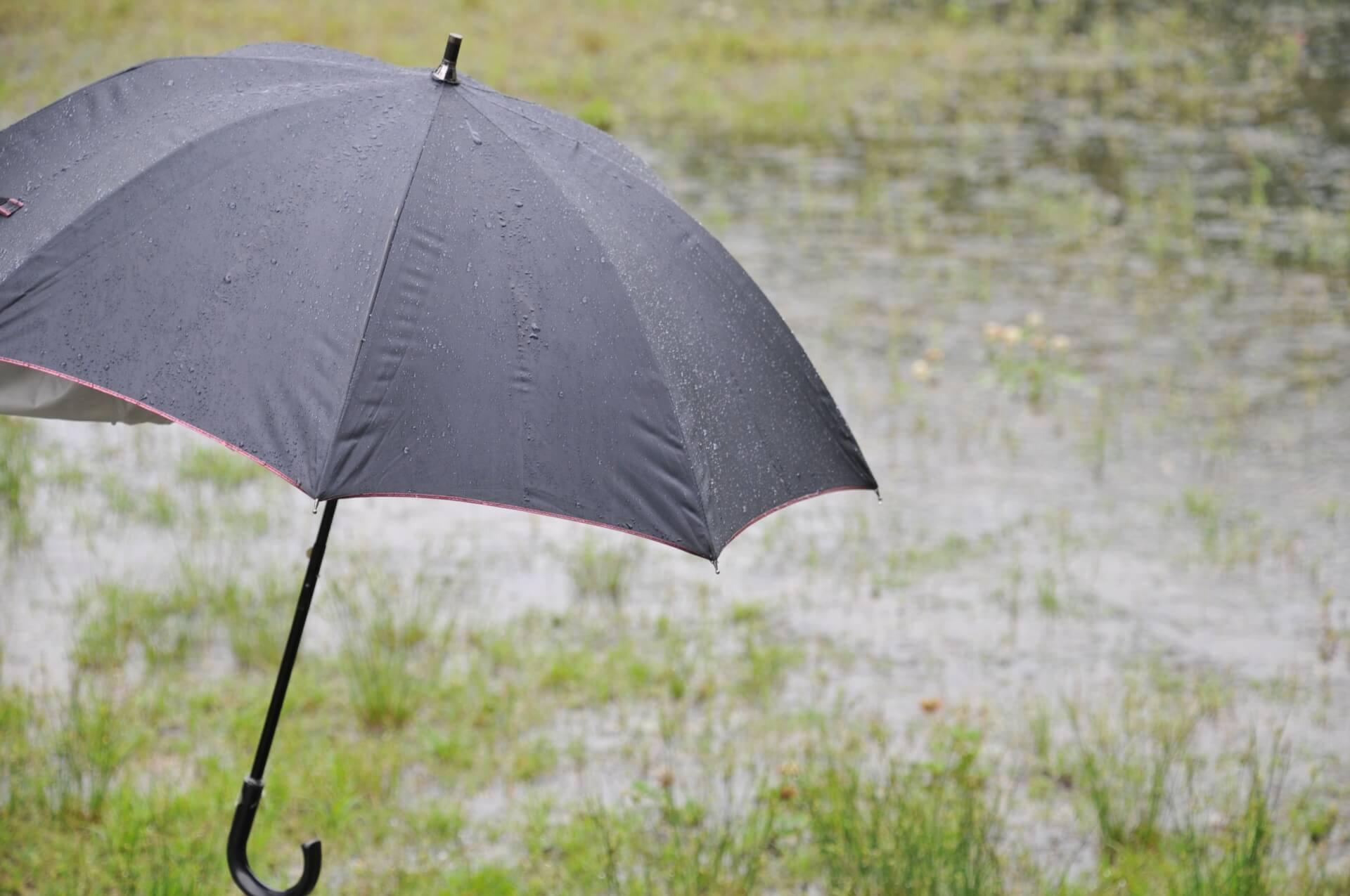 傘立ての賢い選び方。素材や形状ごとの特徴、おすすめ商品を紹介