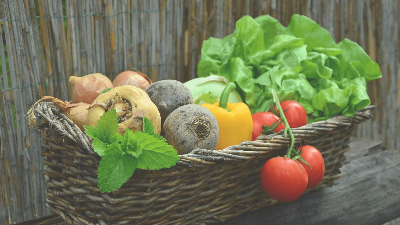 オーガニックアドバイザーが伝える「食と環境」を健やかにする方法